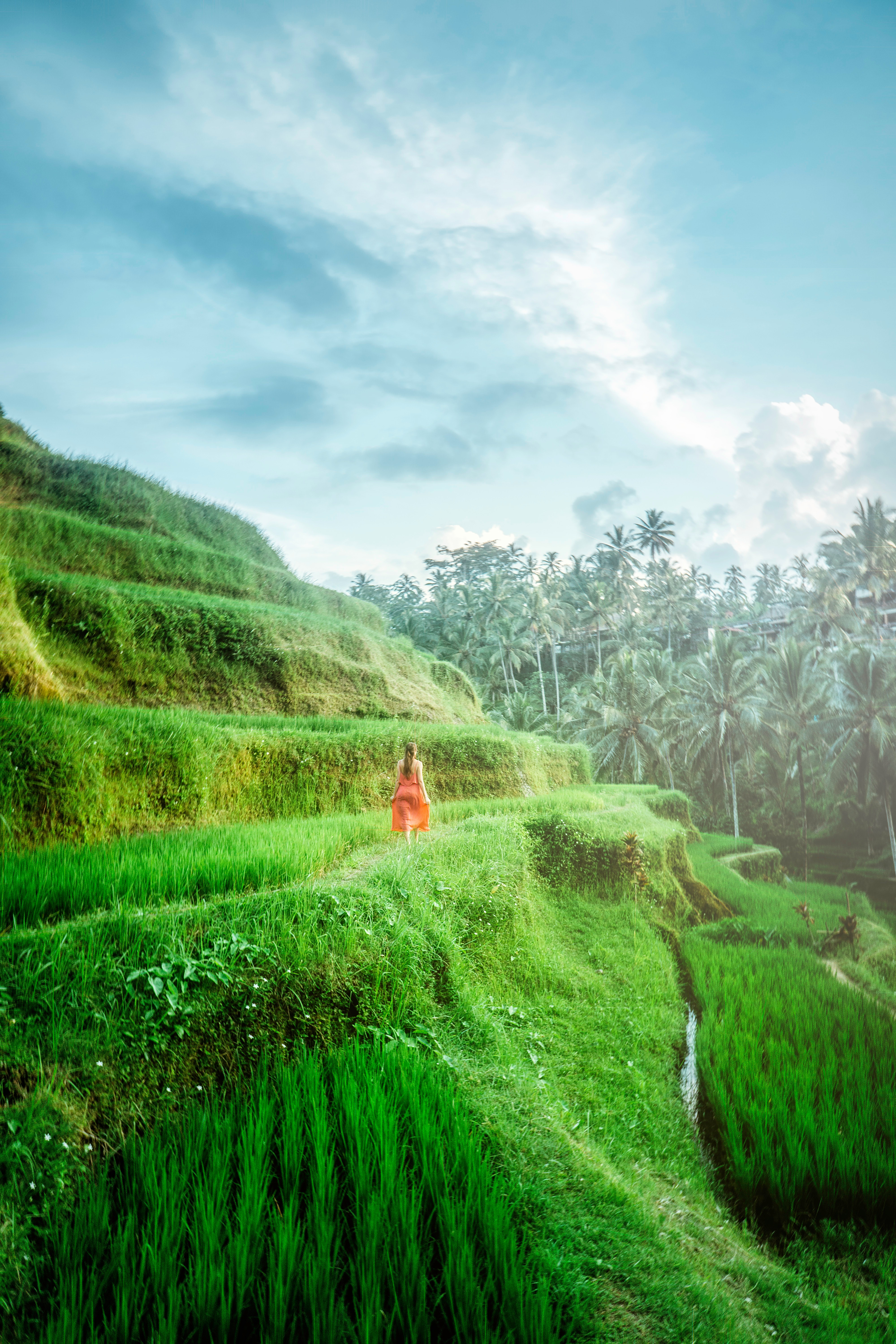 adventure-bali-beautiful-2088019